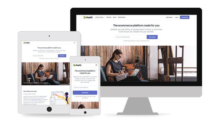 Shopify E-Commerce Store Development and Management Services
